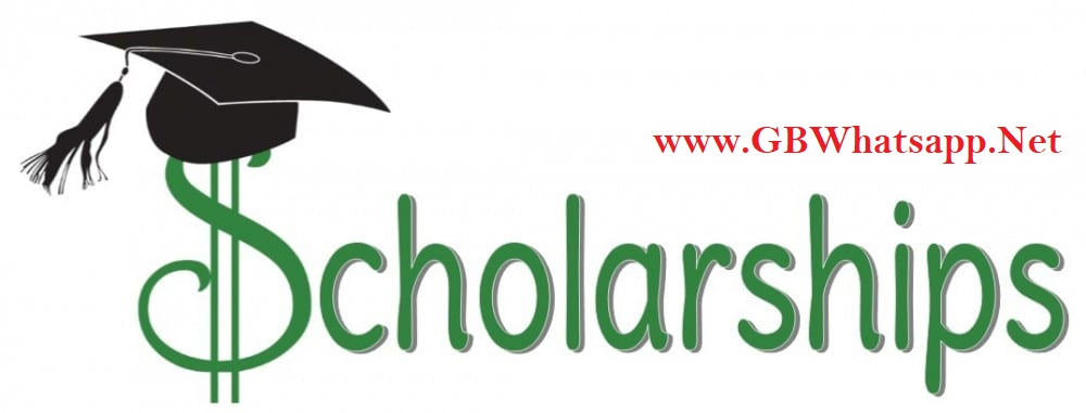GBWhatsapp Scholarship Program